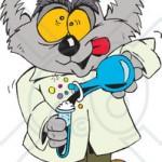 40240_mad_koala